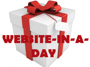 Website in One Day – Get a Website Fast